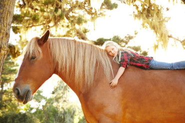 Is Your Horse Right For You?
