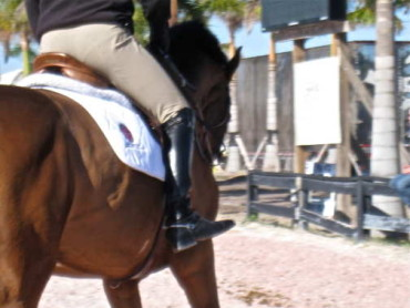 Stirrup-less Lessons