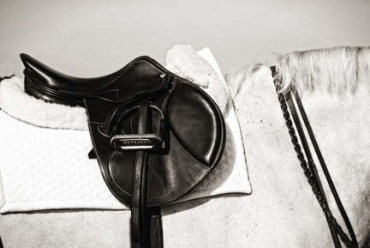 English Saddle Fitting Checklist