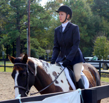 Hunter Under Saddle Training Checklist