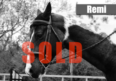 Remi-sold