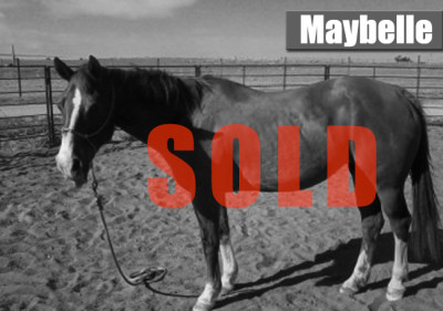 maybelle-sold