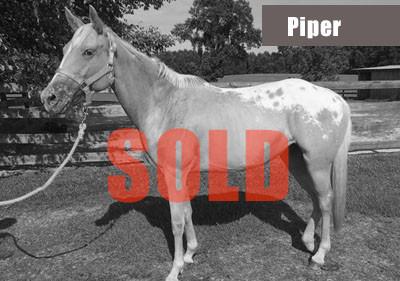Piper-sold