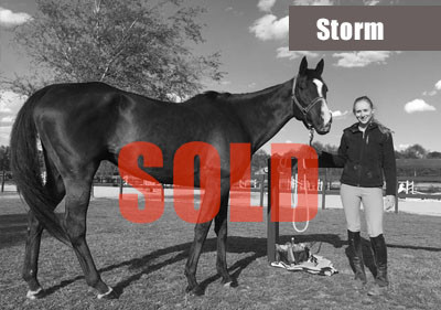 Storm-sold