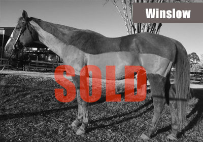 Winslow-sold