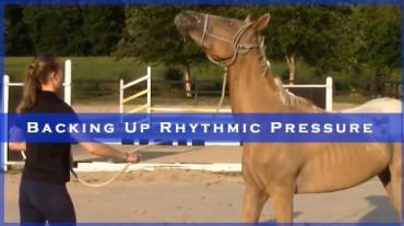 Backing Up Rhythmic Pressure