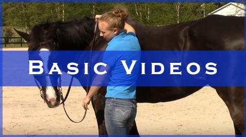 basic videos