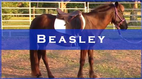 beasley videos