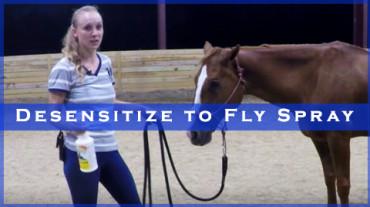 Desensitize to Fly Spray