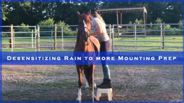 Desensitizing Rain to more Mounting Prep