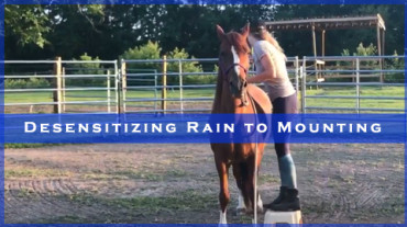 Desensitizing Rain to Mounting