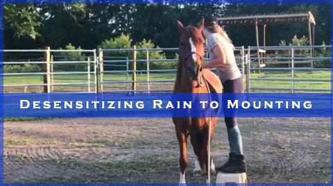 Desensitizing Rain to Mounting