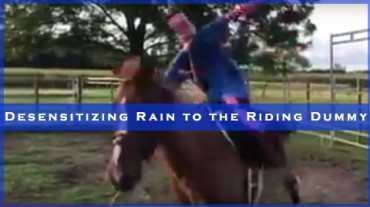 Desensitizing Rain to the Riding Dummy