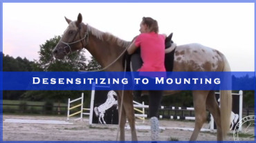 Desensitizing to Mounting