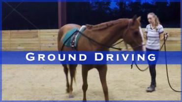 Ground Driving
