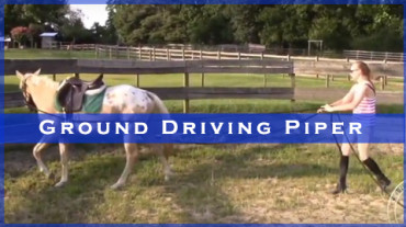 Ground Driving Piper