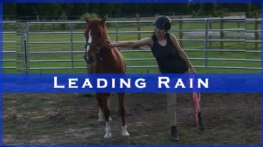 Leading Rain