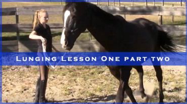 Lunging Lesson One Part Two with Storm