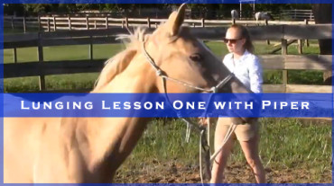 Lunging Lesson One with Piper