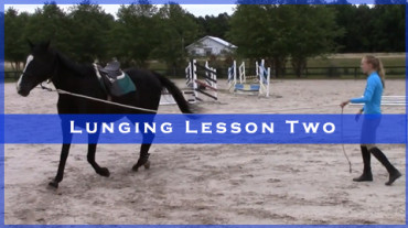 Lunging Lesson Two