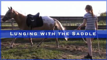Lunging with the Saddle