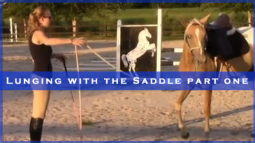 Lunging with the Saddle Part One