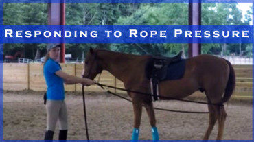 Responding to Rope Pressure