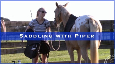 Saddling with Piper