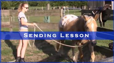 Sending Lesson