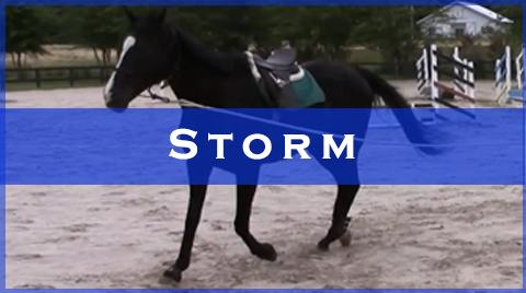 storm videos