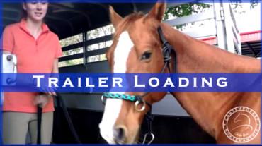 Trailer Loading