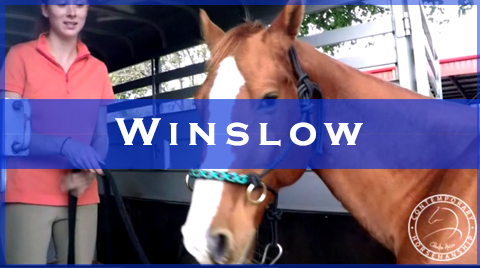 winslow videos