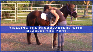 Yielding the Hindquarters with Beasley the Pony